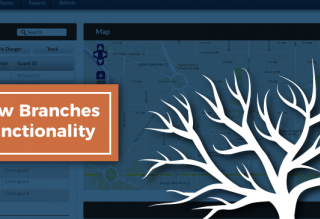 branches feature